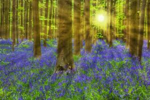Spring is here - FSTP Spring/summer schedule